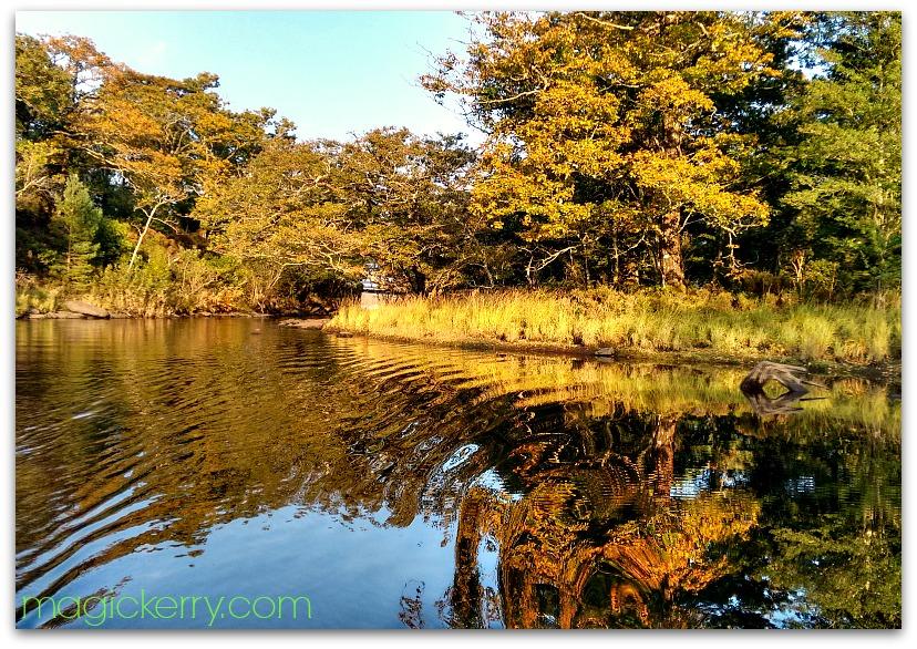 Muckross Lake in October